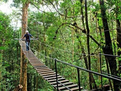 Фото города Монтеверде Коста-Рика