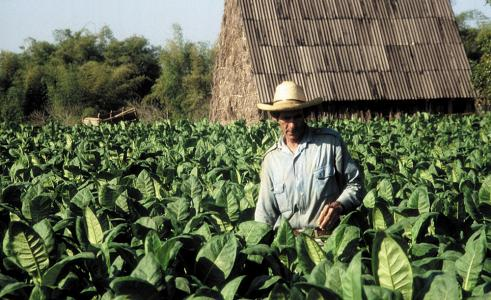 Фото города Пинар дель Рио  Куба
