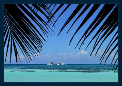 Фото курорта Пунта Кана Доминикана - фото Пунта Кана Доминикана отзывы Эс Ай Турс энд Тревел