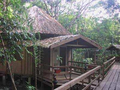 Фото отеля Acajatuba Jungle Lodge Манаус Бразилия - фото Acajatuba Jungle Lodge Бразилия Манаус