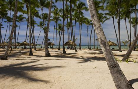 Фото отеля Grand Bahia Principe La Romana Ла Романа Доминикана - фото Grand Bahia Principe La Romana Ла Романа Доминикана Эс Ай Турс энд Трэвел