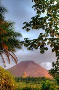Коста Рика за неделю - Фотографии